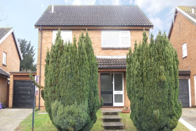 Detached house to rent in Hazel Road, Purley On Thames, Reading