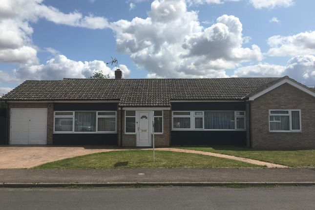 Thumbnail Detached bungalow to rent in The Croft, Harwell