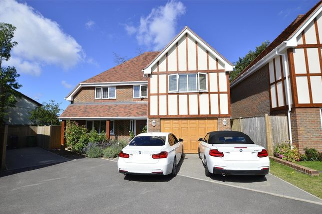 Thumbnail Detached house for sale in Campkin Gardens, St Leonards-On-Sea, East Sussex