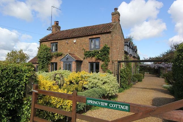 Thumbnail Detached house for sale in Tottenhill Row, Tottenhill, Kings Lynn, Norfolk