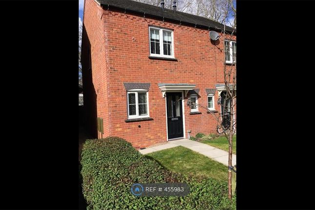 Thumbnail Semi-detached house to rent in Fieldfare Close, Nottingham