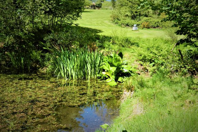 Grounds With Pond