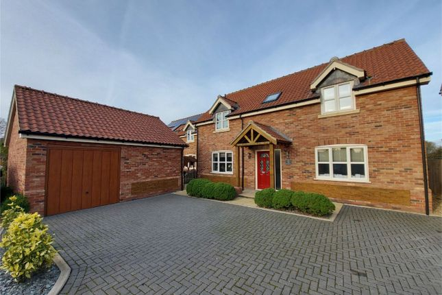 Thumbnail Detached house for sale in Dovetail Close, Wimbotsham, King's Lynn