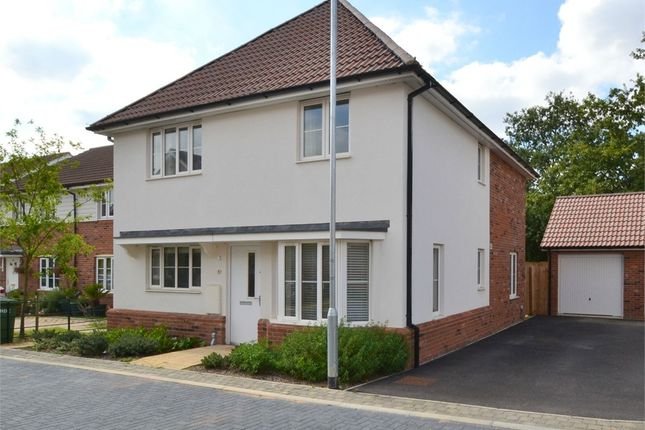Thumbnail Detached house to rent in Bargroves Avenue, St. Neots