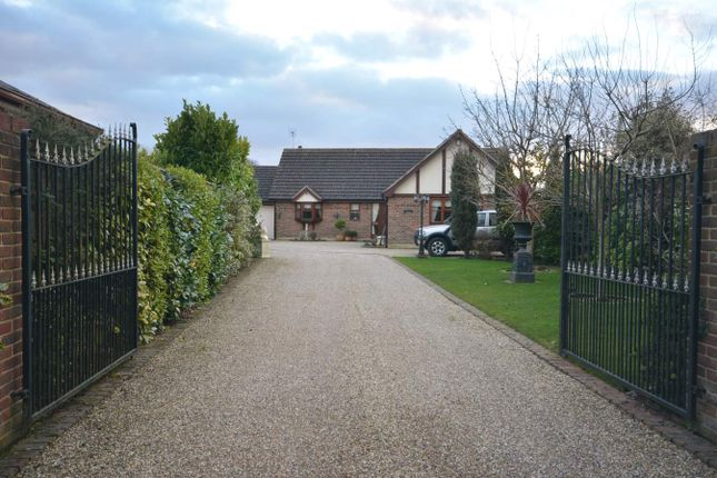 Thumbnail Detached bungalow for sale in Tipps Cross Lane, Hook End, Brentwood