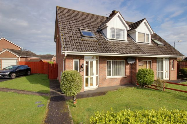 Thumbnail Semi-detached house for sale in Abbey Court, Millisle