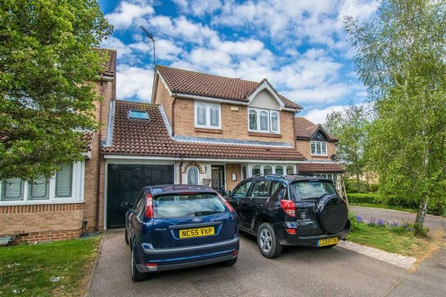 Thumbnail Detached house for sale in The Elms, Hertford