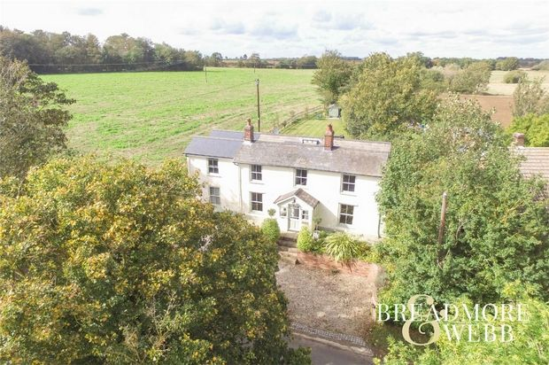 Thumbnail Detached house for sale in Belchamp St Paul, Sudbury, Suffolk