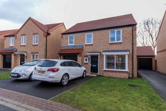 Thumbnail Detached house to rent in Bluebell Walk, Colburn, Catterick Garrison