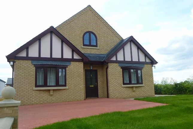 Thumbnail Property to rent in Warboys Road, Bury, Ramsey, Huntingdon