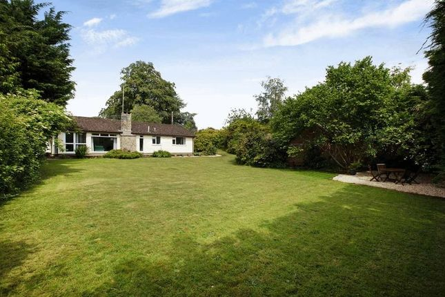 Detached bungalow for sale in West Hill Road, West Hill, Ottery St. Mary