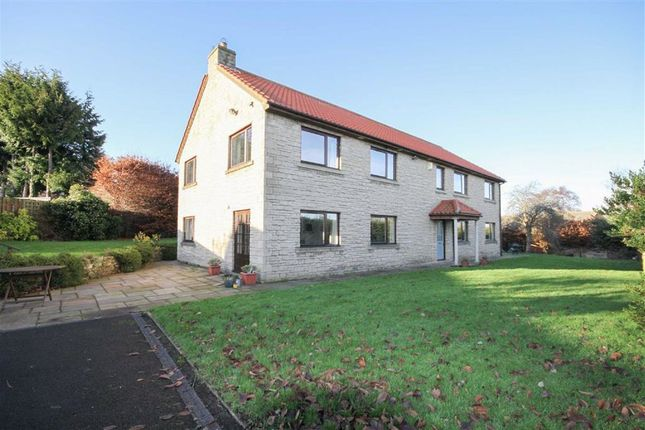Thumbnail Detached house for sale in Queens Road, Wooler, Northumberland