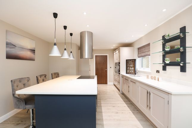 Thumbnail Detached house for sale in Northern Common, Dronfield Woodhouse, Dronfield