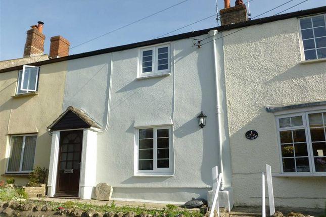 Thumbnail Terraced house for sale in The Rocks, Cattistock, Dorset