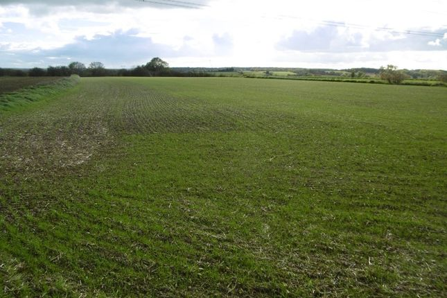 Thumbnail Land for sale in 6.84 Acres Arable/Grass Land, Apy Hill Lane, Tickhill, Doncaster, South Yorkshire