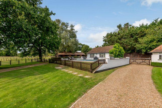 Cottage of Twyford Road, Binfield, Berkshire RG42