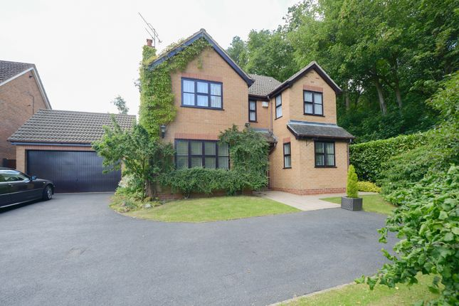 Thumbnail Detached house for sale in Sandstone Avenue, Walton, Chesterfield