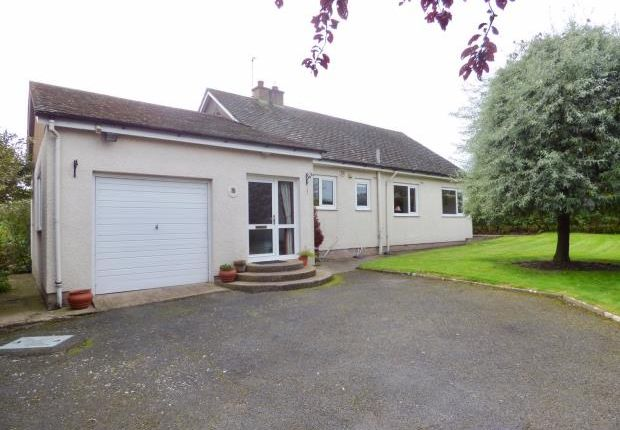 Thumbnail Detached bungalow for sale in Andermatt, Kirkby Thore, Penrith, Cumbria