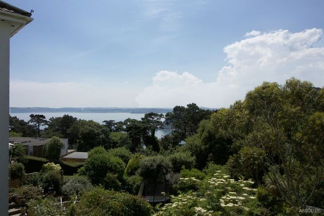 Thumbnail Detached bungalow for sale in Whidborne Avenue, Torquay