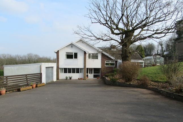 Thumbnail Detached house for sale in Pillmawr Road, Newport