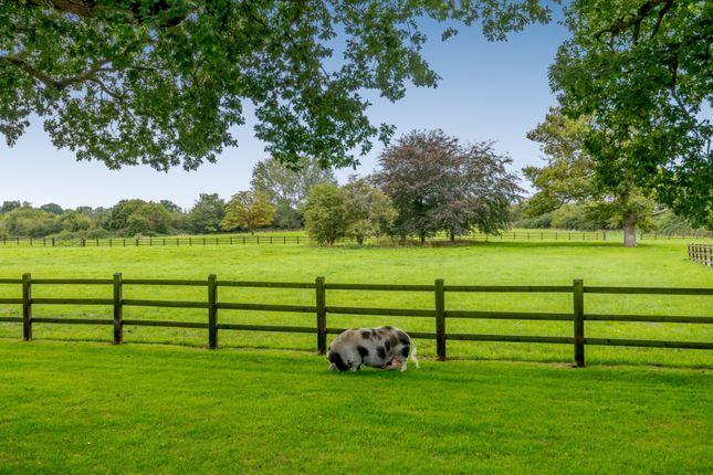 Paddocks of Twyford Road, Binfield, Berkshire RG42