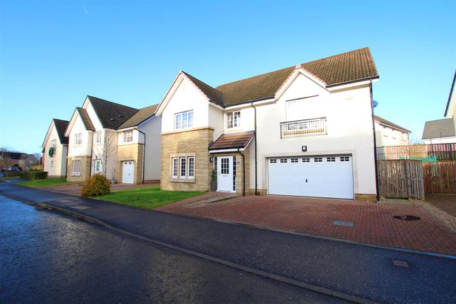 Thumbnail Property for sale in Heron View, Motherwell
