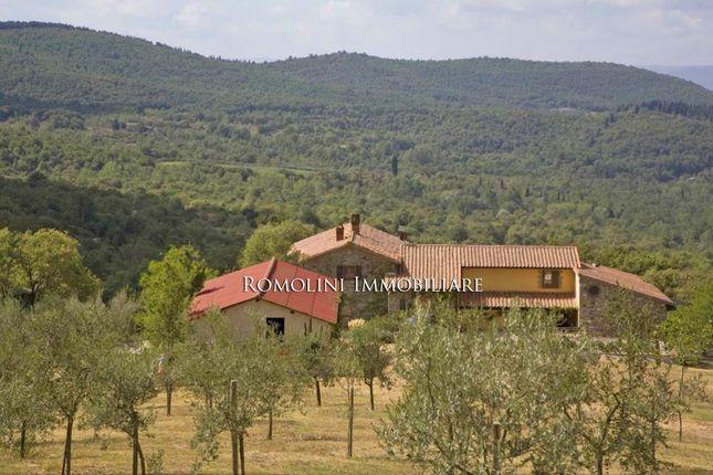 Farm for sale in Montegabbione, Umbria, Italy