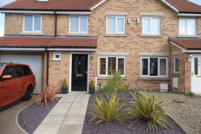 Thumbnail Semi-detached house to rent in Hawthorn Road, Widdrington, Morpeth