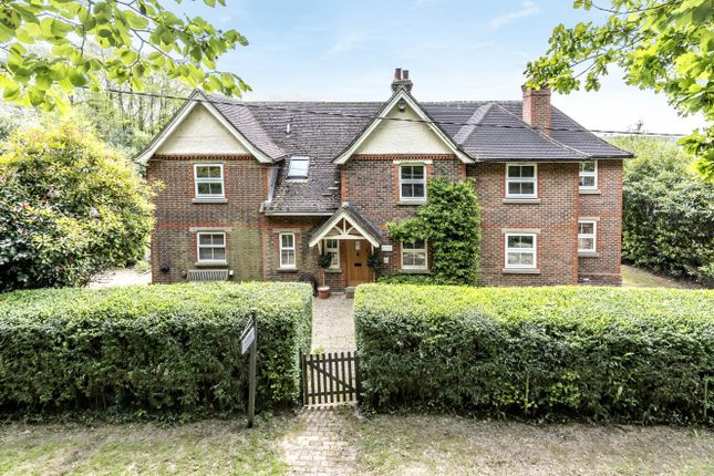 Thumbnail Detached house for sale in Hammer Cottage Hammerpond Road, Plummers Plain