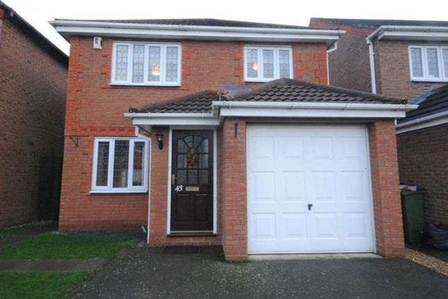 Thumbnail Detached house to rent in Burrows Close, Narborough