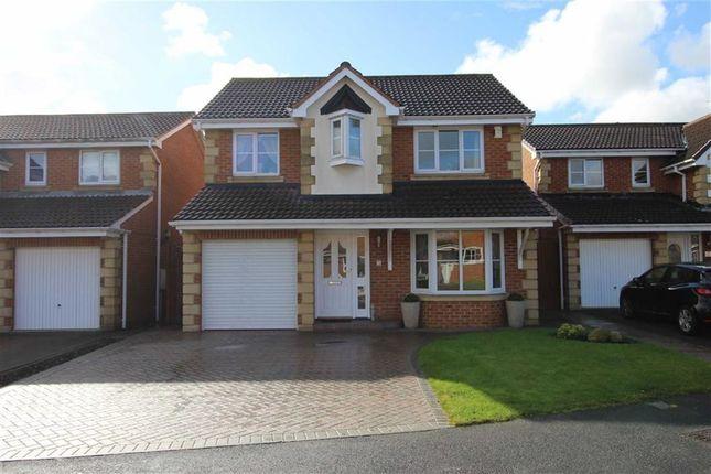 Thumbnail Detached house for sale in Landseer Drive, Billingham