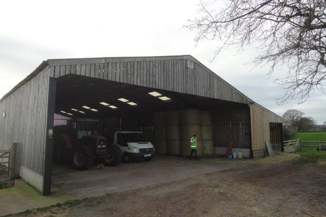 Thumbnail Industrial to let in Feniton, Honiton