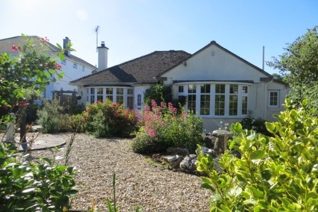 Thumbnail Bungalow to rent in Bodieve, Wadebridge
