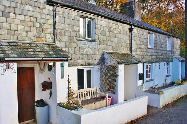 Thumbnail Cottage to rent in Spry Lane, Lifton