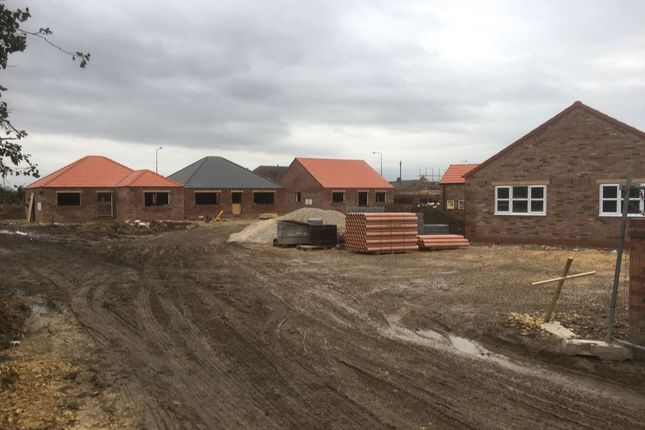 Thumbnail Bungalow for sale in Jasmine Close, Howden, Goole