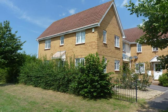 Thumbnail Property to rent in Waterleaze, Taunton, Somerset