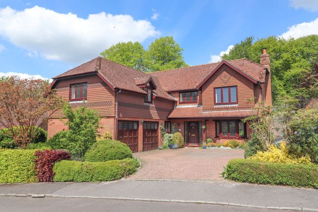Thumbnail Detached house for sale in Chestnut Rise, Droxford, Southampton