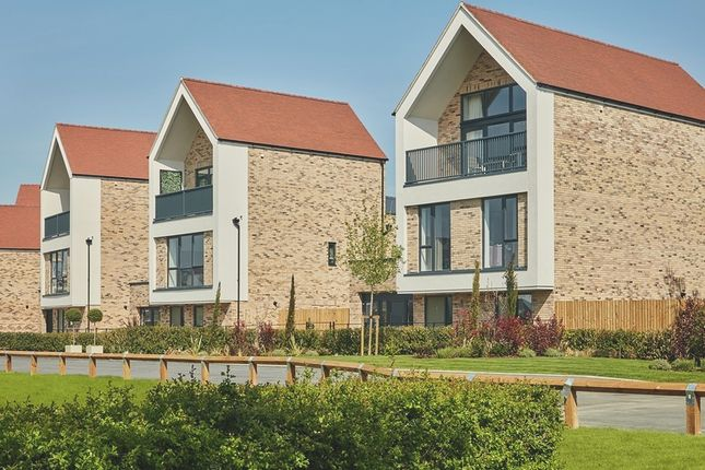 Thumbnail Detached house for sale in Linge Avenue, Off Centenary Way, Chelmsford, Essex