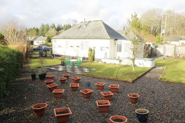 Thumbnail Semi-detached bungalow for sale in Lochy, Kendoon, St Johns Town Of Dalry DG73Ub