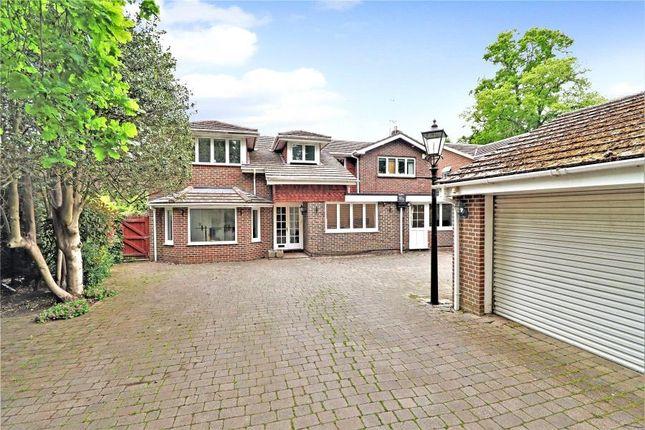 Thumbnail Detached house to rent in Firbank Lane, Woking