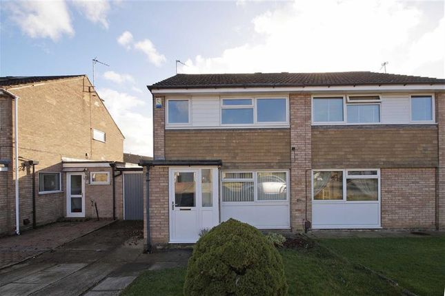 Thumbnail Semi-detached house to rent in Bardale Close, Knaresborough, North Yorkshire