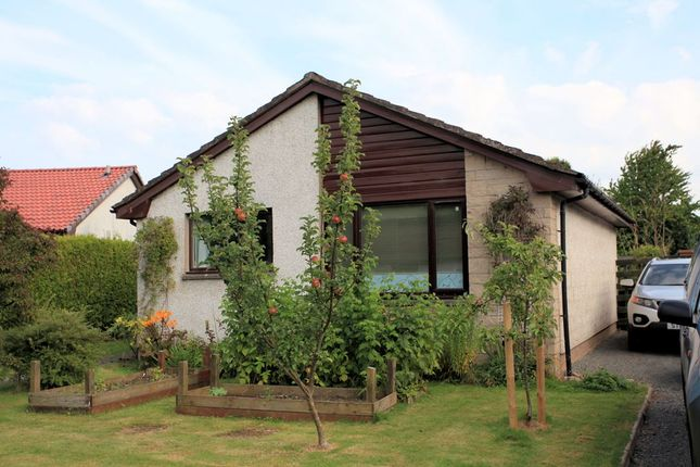Thumbnail Bungalow for sale in Lochay Drive, Comrie