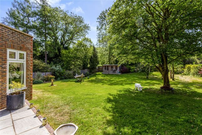 Picture No. 42 of The Glade, Kingswood, Tadworth, Surrey KT20