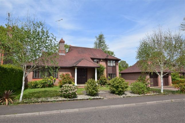 Thumbnail Detached house for sale in Spring Close, Highwoods, Colchester, Essex