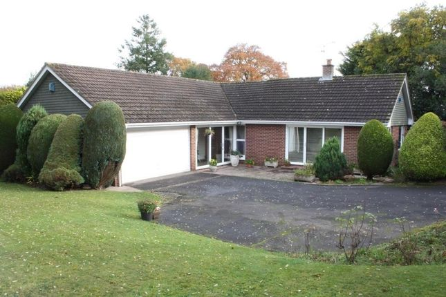 Thumbnail Detached bungalow for sale in Ashley Brake, West Hill, Ottery St. Mary