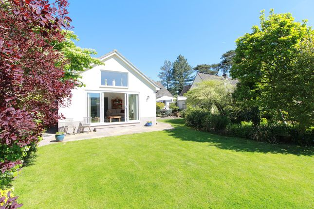 Thumbnail Bungalow for sale in Tredunnock, Usk