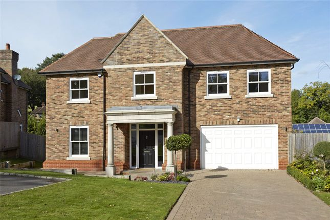 Thumbnail Detached house for sale in High Oaks Close, Coulsdon, Surrey