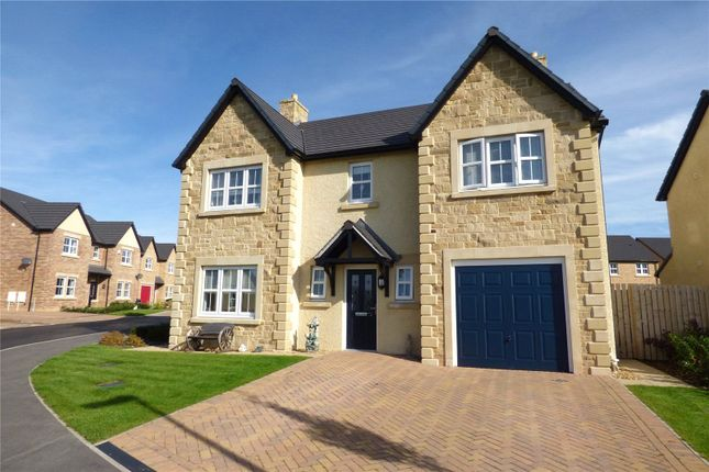 Thumbnail Detached house for sale in Whins Close, High Harrington, Workington