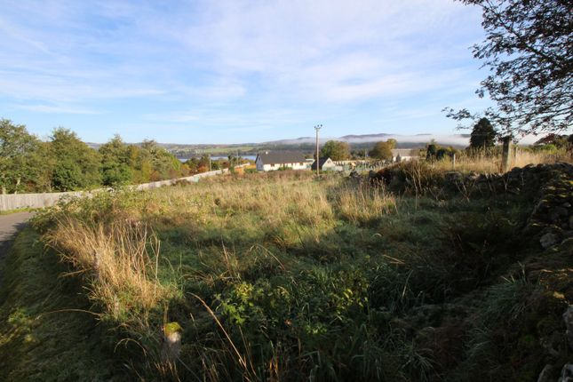 Picture No. 09 of The Plot Kincardine Hill, Ardgay, Sutherland IV24