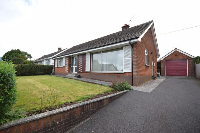 Thumbnail Bungalow to rent in Burnview Drive, Carryduff